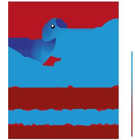 logo_drongo_2014