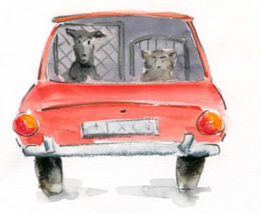 BC-in-car